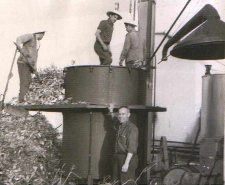 petitgrain-1957