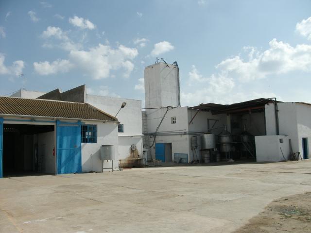 rosemary farm3